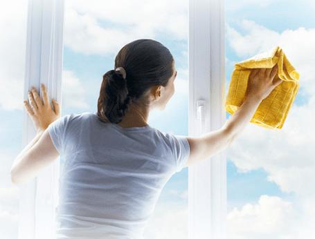 unsere dienstleistungen f r mehr sauberkeit die. Black Bedroom Furniture Sets. Home Design Ideas